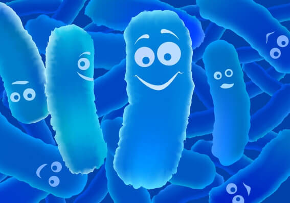 How can Bacteria Be Safe